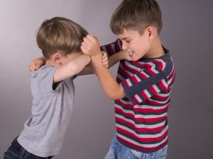 two angry brothers fighting