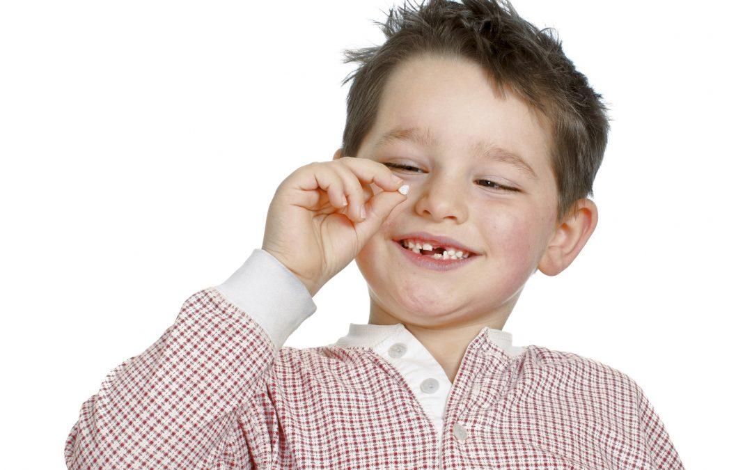 O Dentinho do seu Filho vai Cair?