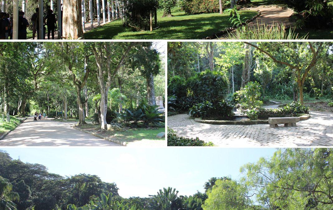Enjoy: Jardim Botânico do Rio de Janeiro
