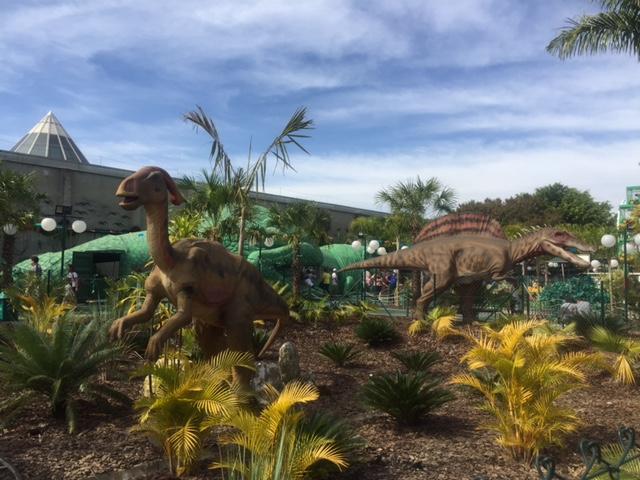 Enjoy – T-Rex Park