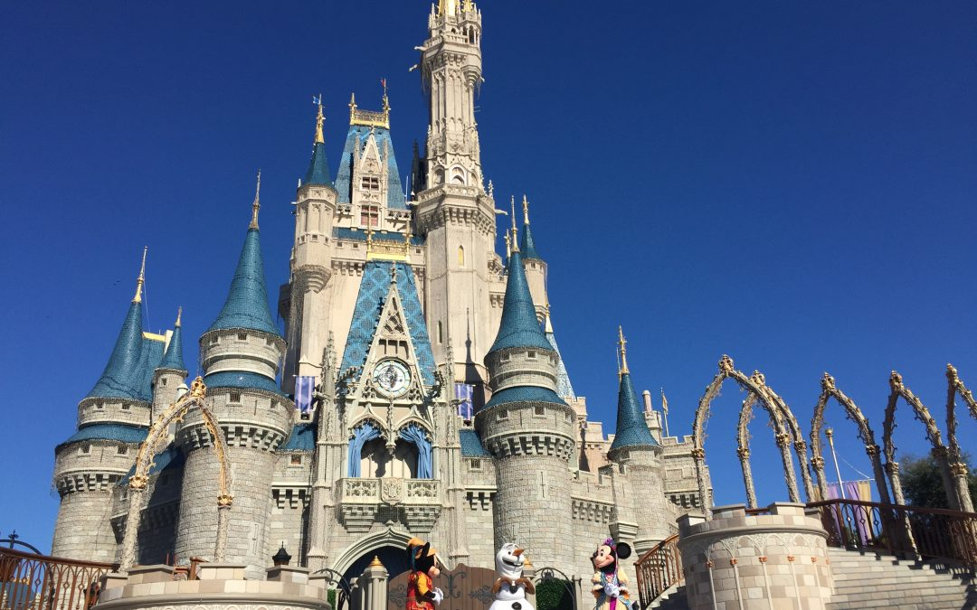 Enjoy – Série Disney – Magic Kingdom