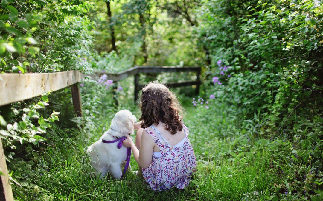 7 dicas – Raças de cachorro boas para crianças