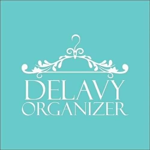 Delavy Organizer